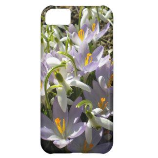 Caso del iPhone 5 del azafrán y de Snowdrops Carcasa iPhone 5C