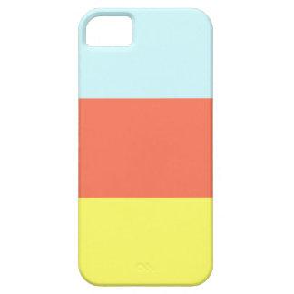 Caso del iPhone 5 del bloque del color iPhone 5 Funda