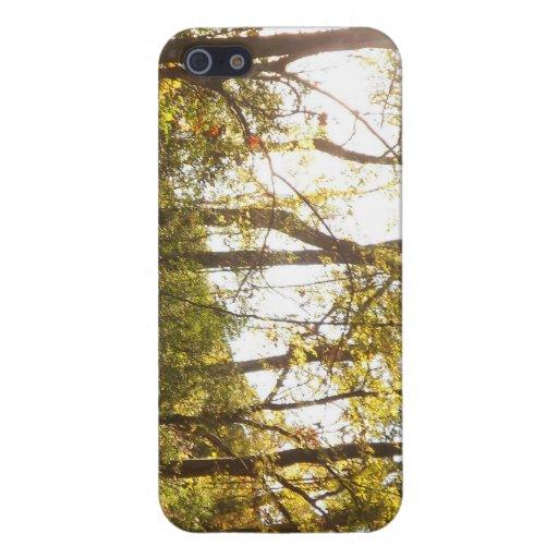 Caso del iPhone 5 del bosque iPhone 5 Carcasa