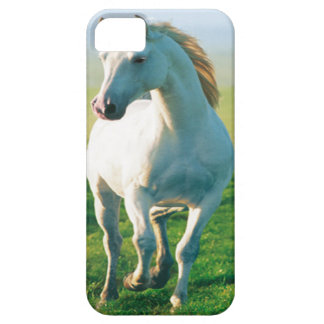 Caso del iPhone 5 del caballo blanco iPhone 5 Cobertura