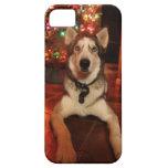 Caso del iphone 5 del husky siberiano iPhone 5 Case-Mate coberturas