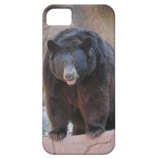 Caso del iPhone 5 del oso negro Funda Para iPhone SE/5/5s