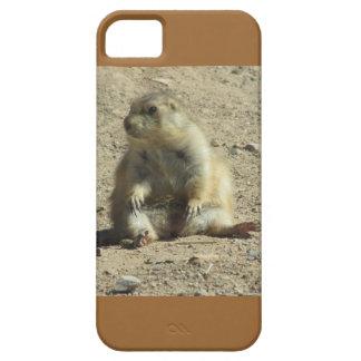 Caso del iPhone 5 del perro de las praderas iPhone 5 Carcasa