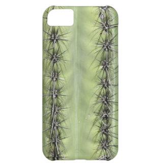 Caso del iPhone 5 del primer del cactus del Saguar