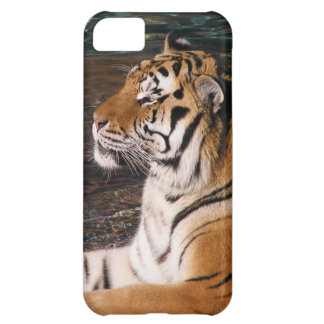 Caso del iPhone 5 del retrato del tigre