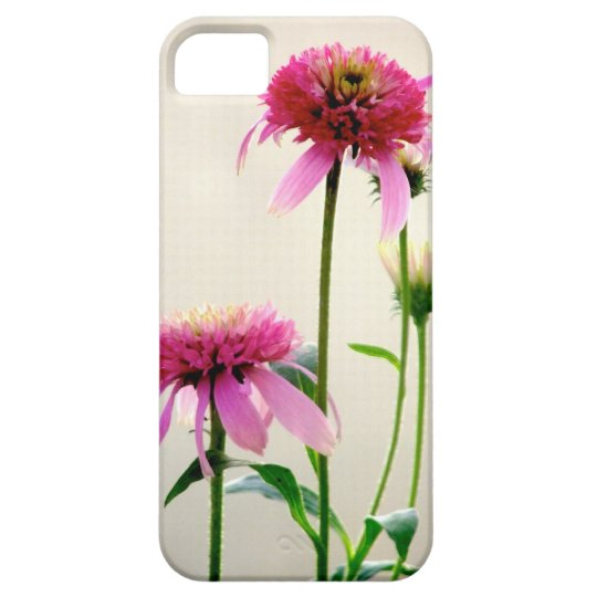 caso del iPhone 5: Echinacea rosado de Lynn Fuston Funda Para iPhone SE/5/5s