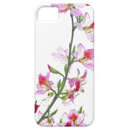 caso del iPhone 5 iPhone 5 Cobertura
