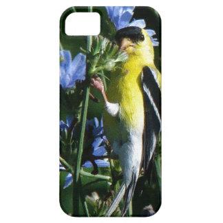 caso del iPhone 5 iPhone 5 Carcasa