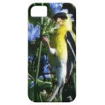 caso del iPhone 5 iPhone 5 Protector