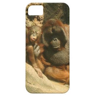caso del iPhone 5 - orangutanes iPhone 5 Funda