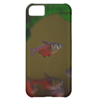 caso del iPhone 5 que muestra tetra pescados rojos Funda Para iPhone 5C