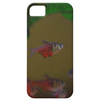 caso del iPhone 5 que muestra tetra pescados rojos Funda Para iPhone SE/5/5s