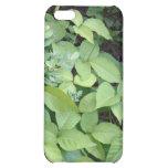 Caso del iPhone 5C de la hiedra venenosa
