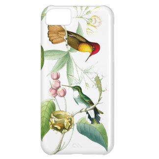 Caso del iPhone 5C de los colibríes y de las flore