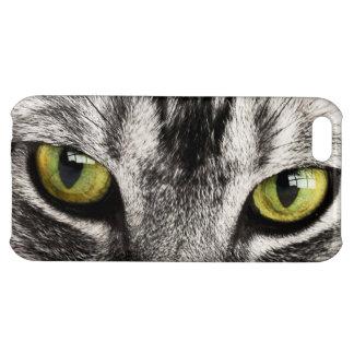 Caso del iphone 5c del primer del gato de tabby de