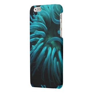 Caso del iPhone 6/6s de la anémona