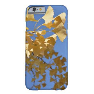 caso del iPhone 6 de la hoja del gingko Funda Barely There iPhone 6
