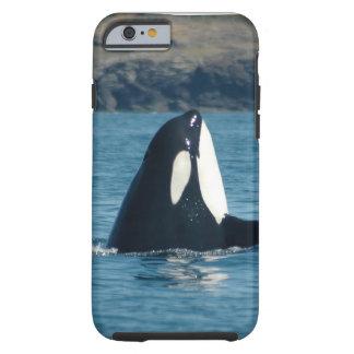 Caso del iPhone 6 de la orca de Spyhopping Funda Resistente iPhone 6