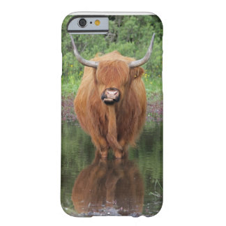 Caso del iPhone 6 de la vaca de la montaña Funda De iPhone 6 Slim
