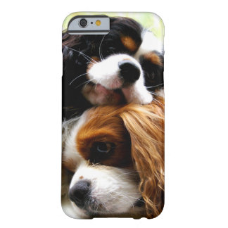 Caso del iPhone 6 de los Cavaliers de los hermanos Funda De iPhone 6 Barely There