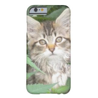 Caso del iPhone 6 del gatito del Tabby Funda Barely There iPhone 6