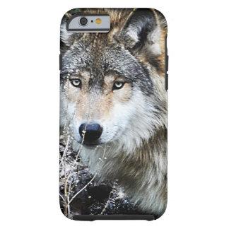 Caso del iPhone 6 del lobo gris Funda Para iPhone 6 Tough