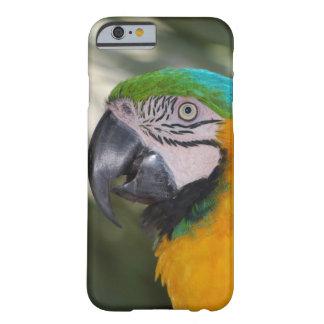 Caso del iPhone 6 del loro del Macaw del azul y Funda De iPhone 6 Barely There