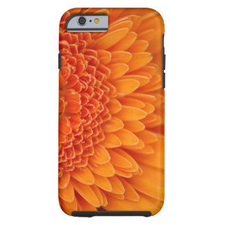 Caso del iPhone 6 del pétalo de la flor