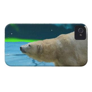 Caso del iPhone ártico del oso polar y de la iPhone 4 Case-Mate Carcasa