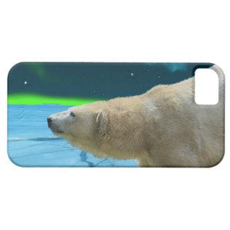 Caso del iPhone ártico del oso polar y de la iPhone 5 Carcasas