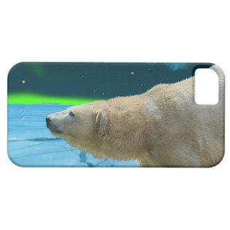 Caso del iPhone ártico del oso polar y de la iPhone 5 Funda