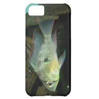 caso del iPhone con la tetra imagen de los pescado