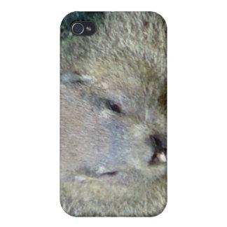 Caso del iPhone de Groundhog iPhone 4 Funda