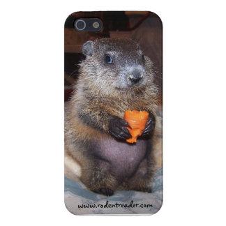 Caso del iPhone de Groundhog Maude del bebé iPhone 5 Cobertura