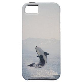 Caso del iPhone de la ballena iPhone 5 Case-Mate Funda