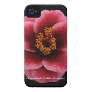 Caso del iPhone de la camelia por los diseños de iPhone 4 Protectores