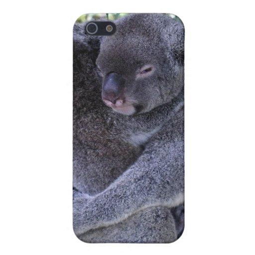 Caso del iPhone de la familia de la koala iPhone 5 Protector