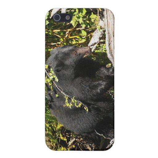 """Caso del iPhone de la fauna de la """"localización de iPhone 5 Funda"""