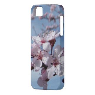 Caso del iPhone de la flor de cerezo del Zen iPhone 5 Carcasa