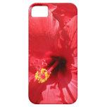 Caso del iPhone de la flor del poder iPhone 5 Case-Mate Carcasa