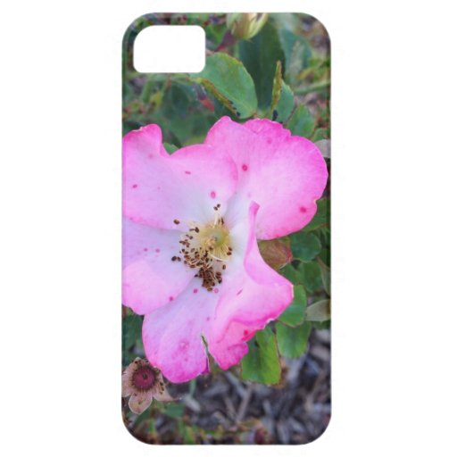 Caso del iPhone de la flor iPhone 5 Fundas
