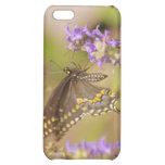 Caso del iPhone de la mariposa de la primavera