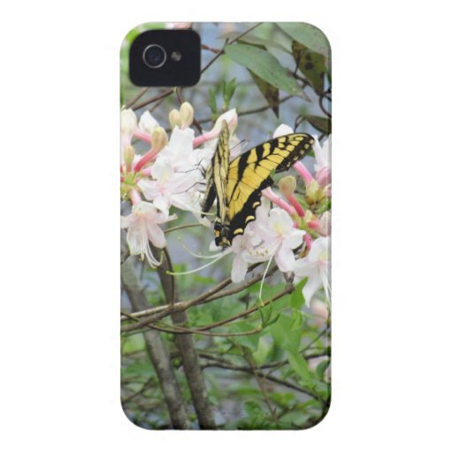 Caso del iPhone de la mariposa de monarca iPhone 4 Case-Mate Protector