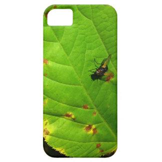 Caso del iPhone de la mosca de soplo iPhone 5 Case-Mate Protector