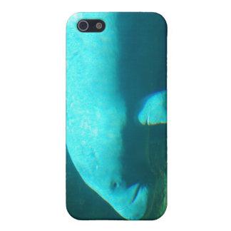 Caso del iPhone de la natación del Manatee iPhone 5 Funda