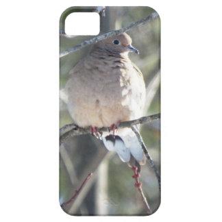 Caso del iPhone de la paloma de la buena mañana iPhone 5 Case-Mate Cárcasa