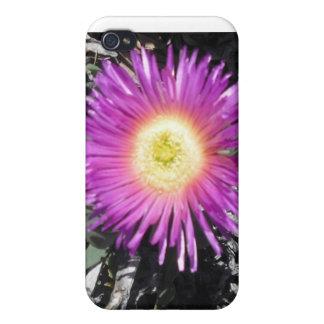 Caso del iPhone de la planta de hielo iPhone 4 Protector