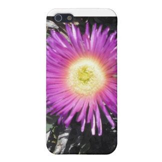 Caso del iPhone de la planta de hielo iPhone 5 Carcasas