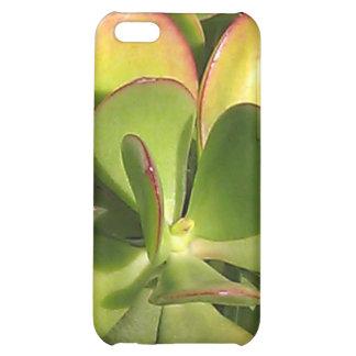 Caso del iPhone de la planta del jade