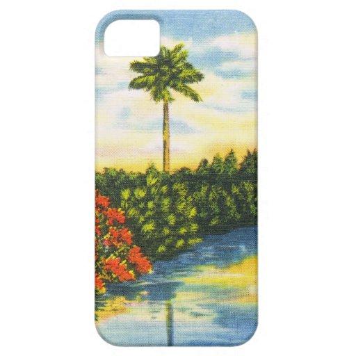 Caso del iPhone de la puesta del sol de la palmera iPhone 5 Case-Mate Protector